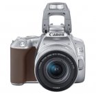 EOS 250D 18-55IS STM Silver (3461C001)
