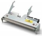 Печатающая головка TPH, 300dpi 4in, Assy Spare PM43 (710-179S-001)