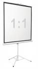 "Экран на штативе Digis DSKD-1106, формат 1:1, 112"" (206x209), MW, Kontur-D (DSKD-1106)"