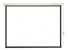 Экран с электроприводом Lumien Eco Control 220x220 см (раб. область 214х214 см) MW черная кайма 1:1 (LEC-100103)