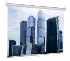 Экран настенный Eco Picture (180х180), рабочая область (180х180), Matte White (LEP-100102)