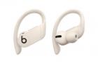 Наушники Powerbeats Pro Totally Wireless Earphones - Ivory (MV722EE/ A)